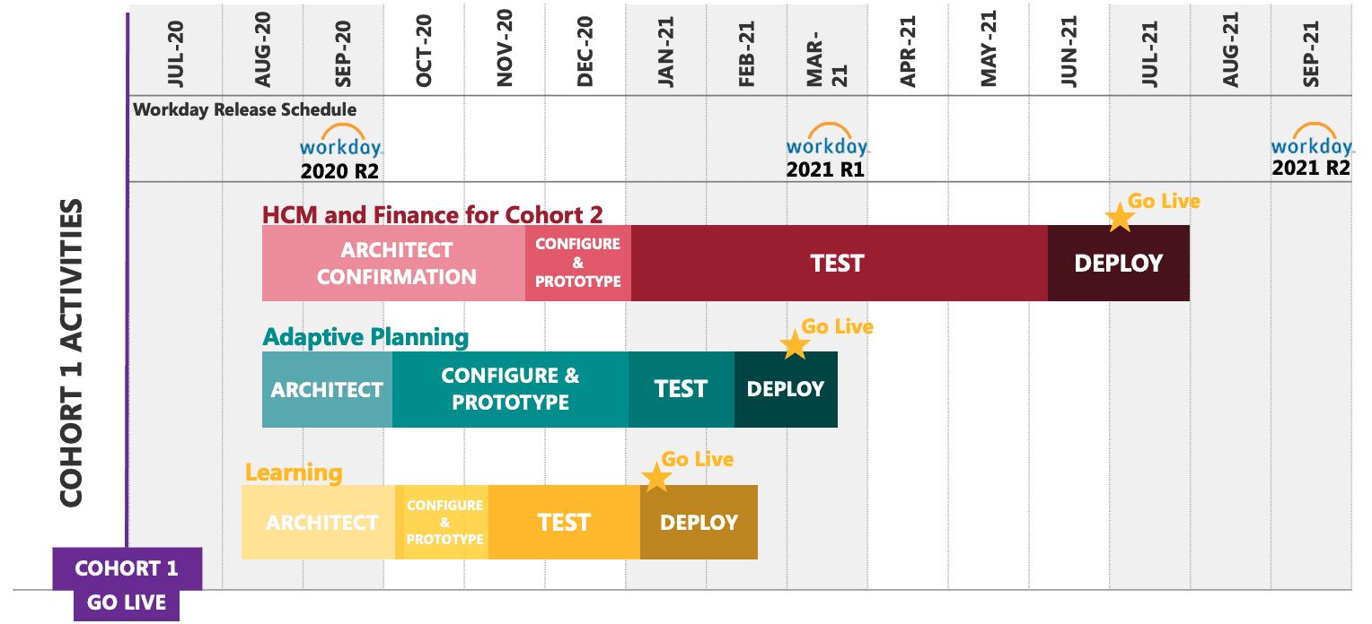 Cohort 2 Timeline